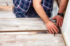 Man using measuring elbow and pencil while installing new wooden laminate flooring at home. royalty free stock images