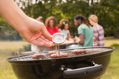 Man using meat thermometer while barbecuing Stock Photography