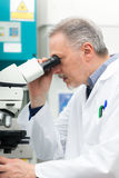 Man using a microscope in a laboratory. Man using a microscope in a chemical laboratory Royalty Free Stock Photography