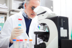 Man using a microscope in a laboratory. Man using a microscope in a chemical laboratory Royalty Free Stock Photo