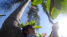 Man using mobile smartphone outdoor lying under palm tree in slow motion. 1920x1080. Hd stock video