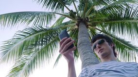 Young man wearing sunglasses using mobile smartphone outdoor under palm tree. 3840x2160. Man using mobile smartphone outdoor under palm tree stock video footage