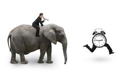 Man using speaker riding elephant after alarm clock Stock Images