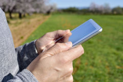 Man using a tablet in a grove of almond trees Stock Images