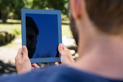 Man using tablet in the park Stock Image