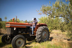 Man using virtual reality headset in tractor. Man using virtual reality headset in olive farm on a sunny day Stock Image