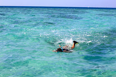 Man on vacation snorkeling in the sea Stock Image