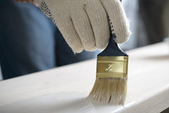 Painting the plank. Man varnishing the wooden plank royalty free stock image