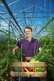 Man with vegetable box Royalty Free Stock Photo
