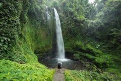 Man vid den frodiga gröna tropiska regnskogvattenfallet Arkivfoto
