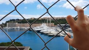 Man views yachts behind fence, corrupt official looks at confiscated property stock video footage