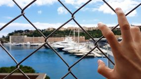Man views yachts behind fence, corrupt official looks at confiscated property. Stock photo royalty free stock photos