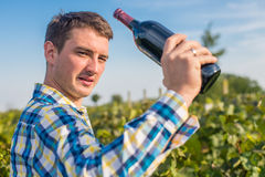 A man in a vineyard. Drink red wine Royalty Free Stock Photos