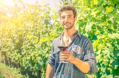 Man in a vineyard with a glass of wine. Man holding glass for wine tasting in a vineyard Royalty Free Stock Photography