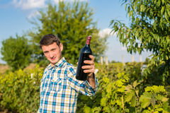 A man in a vineyard. The men in the vineyard drink red wine Royalty Free Stock Photo