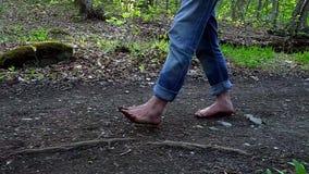 Man voeten die op een weg in een bos lopen stock videobeelden