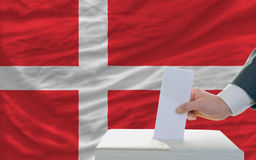 Man voting on elections in denmark. Man putting ballot in a box during elections in denmark in fornt of flag Stock Image