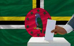 Man voting on elections in dominica. Man putting ballot in a box during elections in dominica in fornt of flag Royalty Free Stock Image