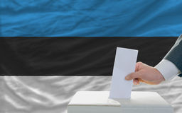 Man voting on elections in estonia. Man putting ballot in a box during elections in estonia in fornt of flag Stock Images