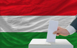 Man voting on elections in hungary. Man putting ballot in a box during elections in hungary in fornt of flag Royalty Free Stock Photos