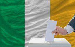 Man voting on elections in ireland Royalty Free Stock Image