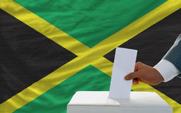 Man voting on elections in jamaica Royalty Free Stock Photo