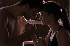 Man vrouw opleidingsgymnastiek het in dozen doen de gemengde vechtsporten F van de mmaring stootkussens Stock Afbeeldingen