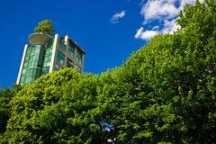 Man Vs Nature. Modern building peering through the trees Royalty Free Stock Images
