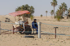 Man waiting. Berber are waiting  in oasis  on Sahara desert in Tunisia . Africa Royalty Free Stock Photography