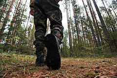 Man walk at autumn forest Royalty Free Stock Photo