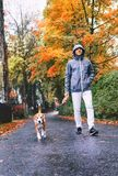 Man walk with dog by autumn street Stock Image