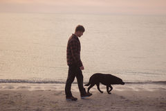 Man walk with dog. Young caucasian male walking with dog on the morning beach, sunset on the sea or ocean and man with black labrador puppy Stock Photography