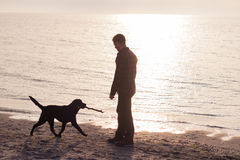 Man walk with dog. Young caucasian male walking with dog on the morning beach, sunset on the sea or ocean and man with black labrador puppy Royalty Free Stock Image