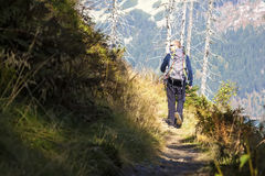 Man walk over the mountains, Czech mountains Krkonose Royalty Free Stock Photo