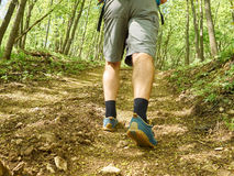 A man walk uphill the forest trail . Hiking Stock Photo