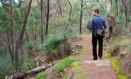 Man walking at Alligator Gorge Royalty Free Stock Photo