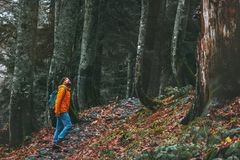 Man walking alone in deep forest Travel healthy active lifestyle stock photos