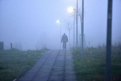 Man walking alone in foggy weather Stock Photography