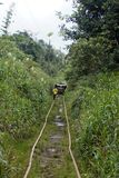 Man walking along abandoned railroad tracks used by homemade vehicles. Man walking along abandoned railroad tracks in the jungle, used by `ghost trains` or Royalty Free Stock Images