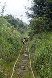 Man walking along abandoned railroad tracks used by homemade vehicles. Man walking along abandoned railroad tracks in the jungle, used by `ghost trains` or Stock Photography