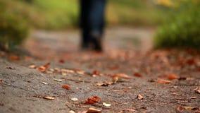 Man walking along a leafy path stock video