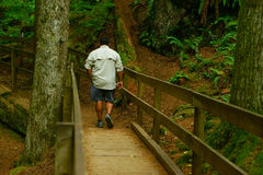 Man Walking Along Scenic Trail Royalty Free Stock Photography