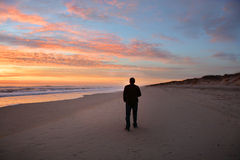 Man walking on beach at beautiful sunrise. Royalty Free Stock Image