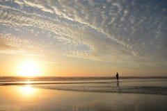 Man walking on the beach at sunrise. Royalty Free Stock Image