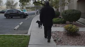 Man walking black dog stock footage