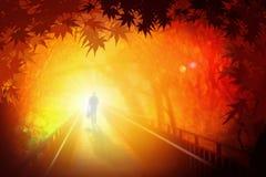 Man walking on bridge under Autumn leaves stock image