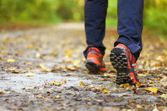 Man walking cross country trail in autumn forest Stock Photo