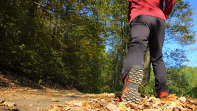 Man walking cross country trail in autumn forest Stock Images