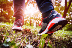 Man walking cross country and trail in spring forest Stock Image