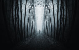 Man walking on a dark path in a strange dark forest with fog